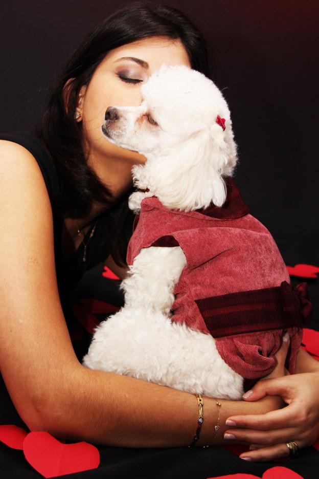 Ensaio Fotográfico Cachorro (16)