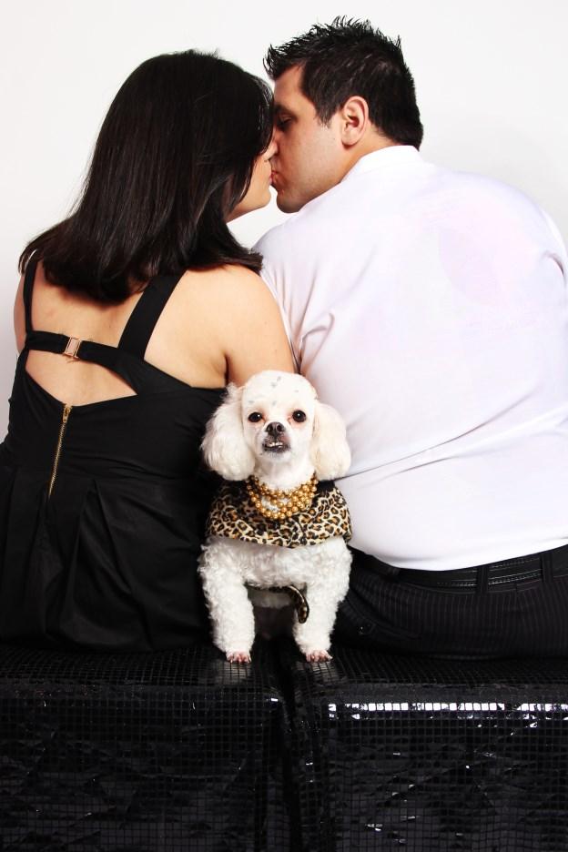 Ensaio Fotográfico Cachorro (8)