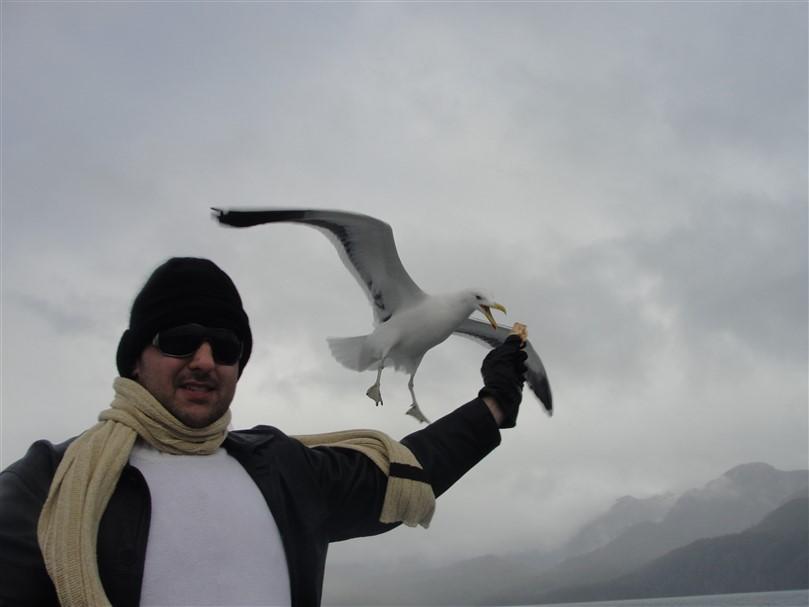 Isla Victoria Bariloche (12)