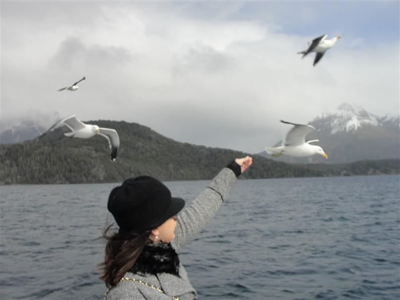 Isla Victoria Bariloche (7)