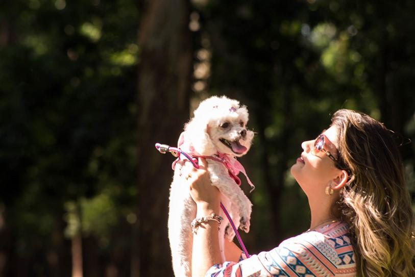Fotógrafo de Cães - Ensaio Susinha (6)