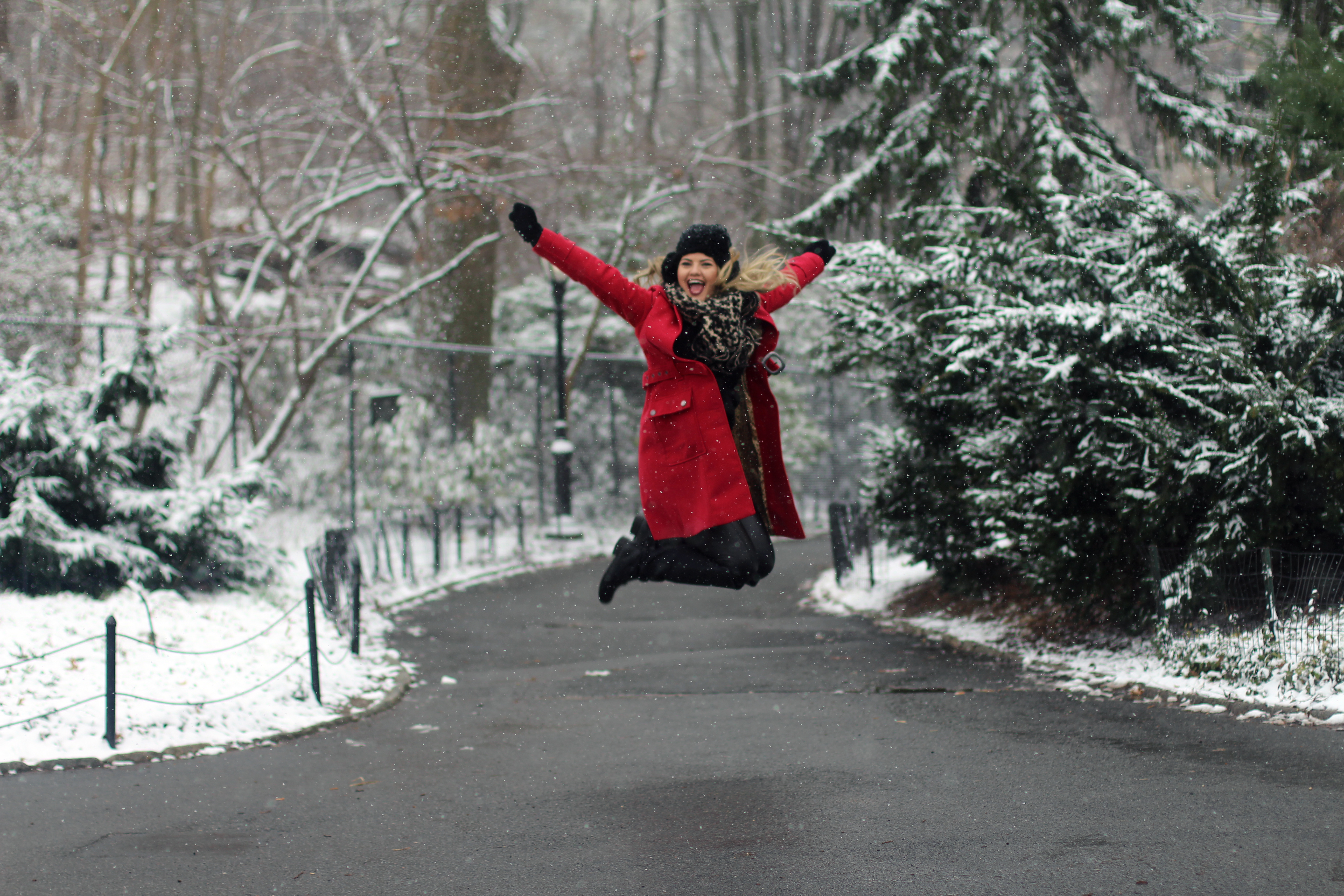 Neve no Central Park (9)