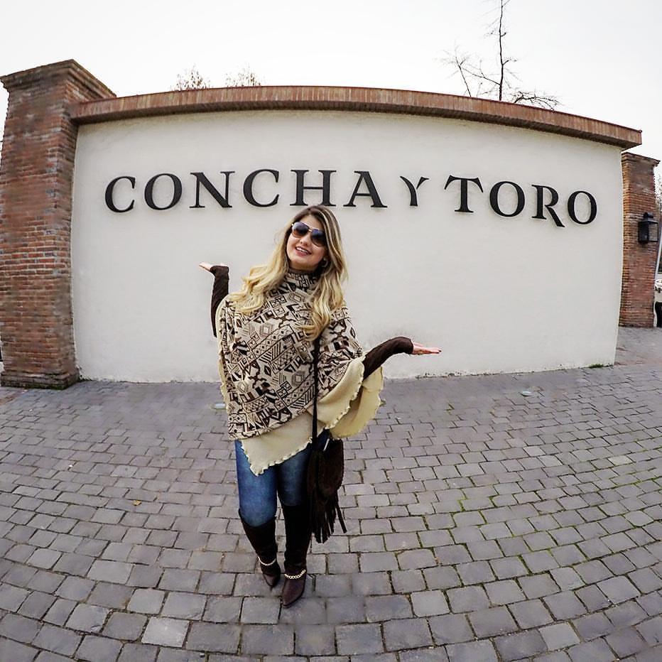 Tour Concha y Toro